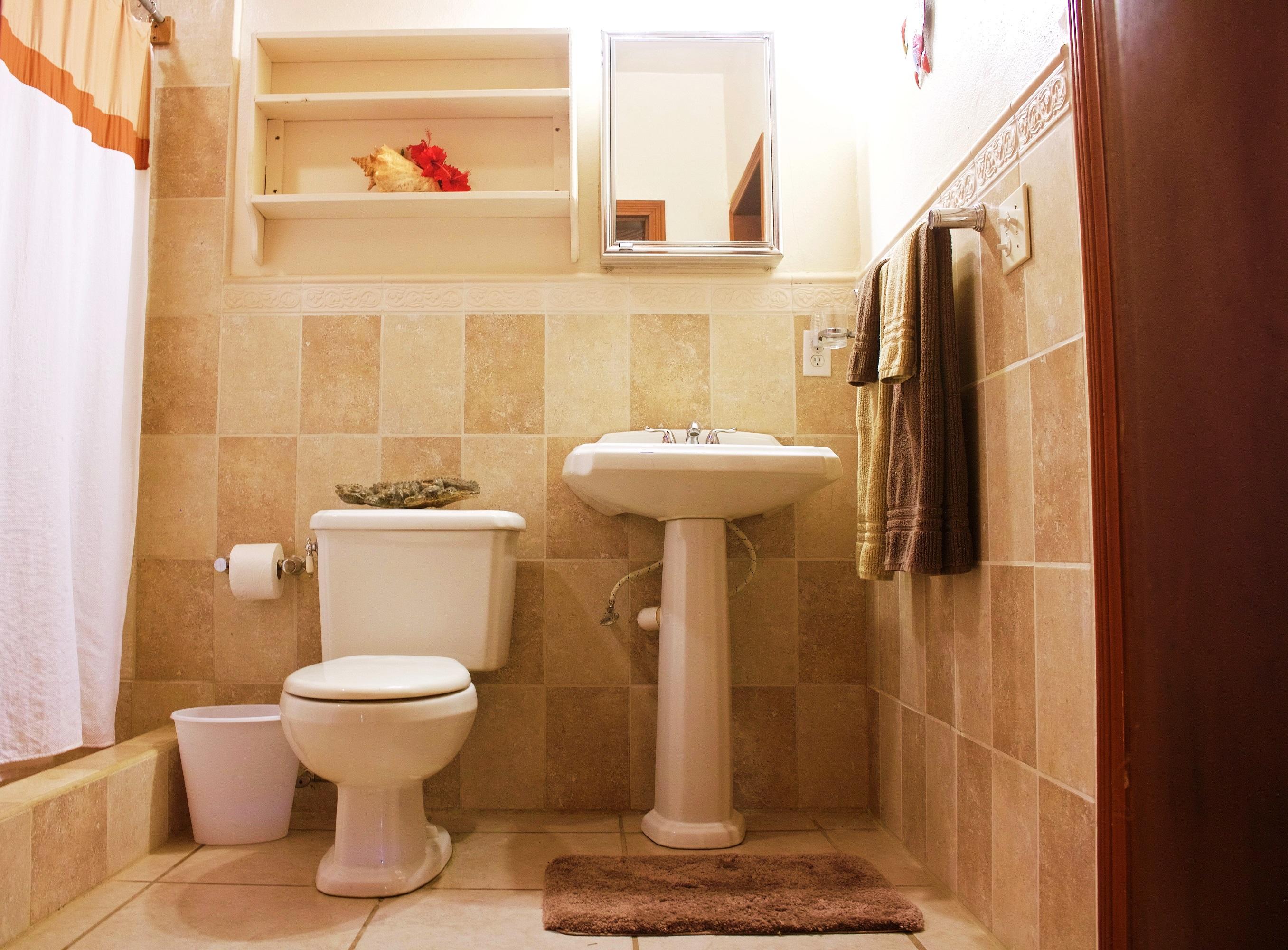 SV4B-tiled-master-bathroom-II