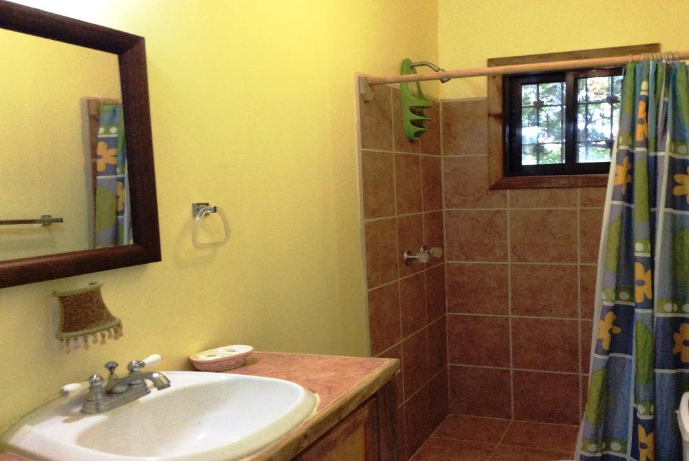 downstairs-bathroom-1