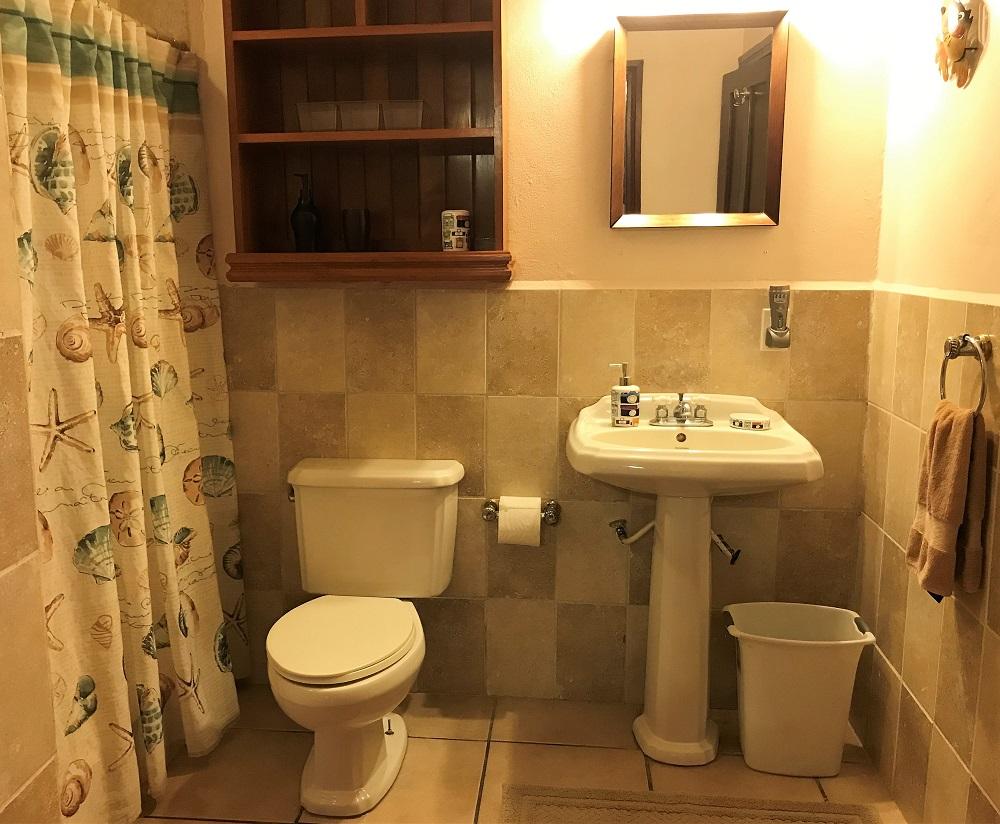 SV3B-bathroom