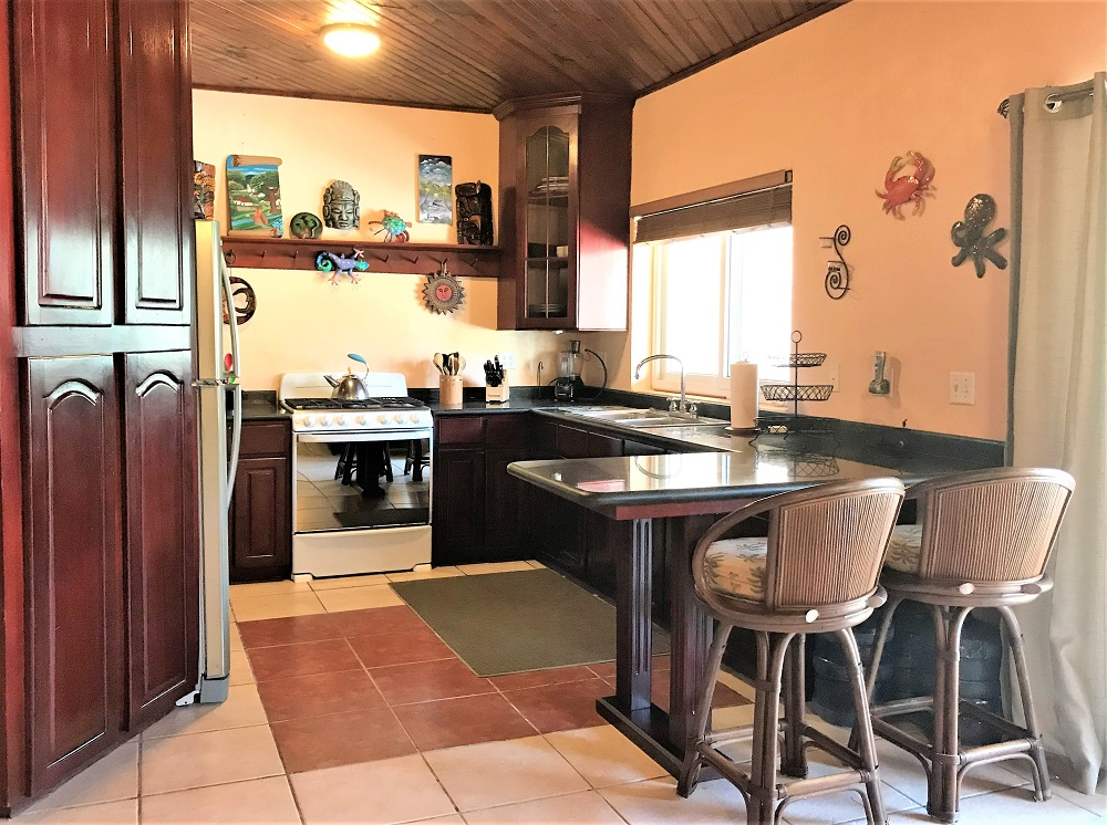 SV3B-kitchen