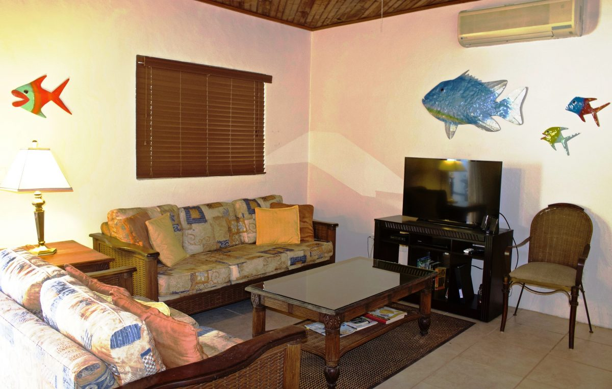 SV4B-living-room-e1545928130762