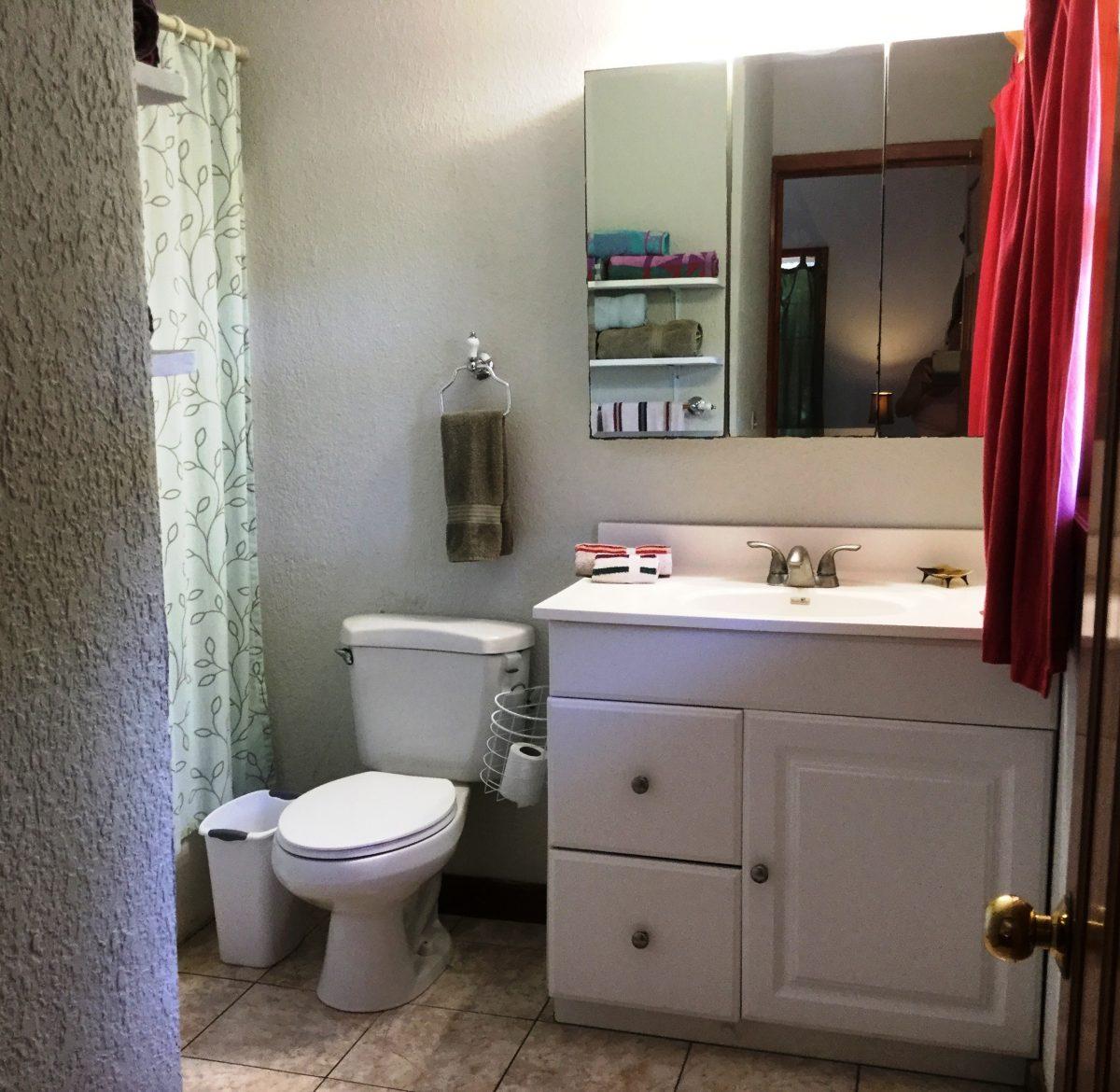 bathroom-3-e1545927667933