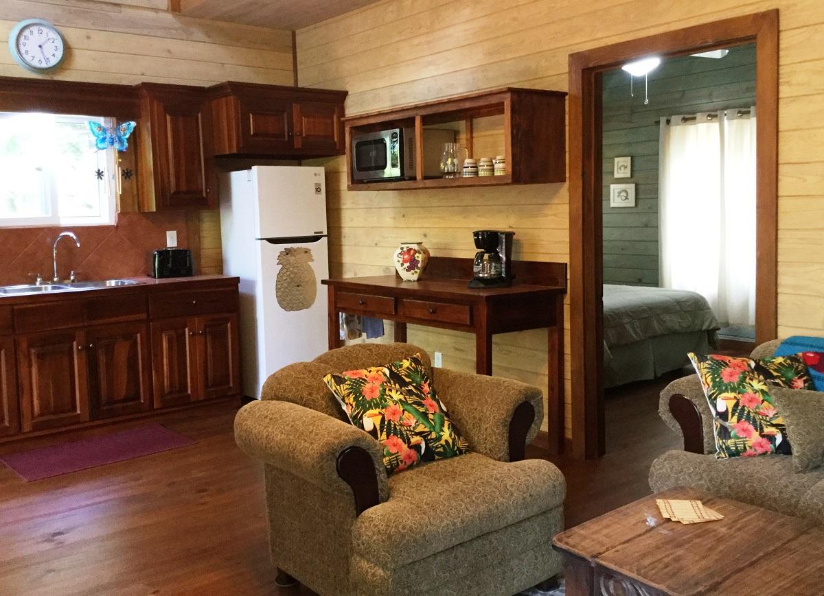 living-room-kitchen-bedroom