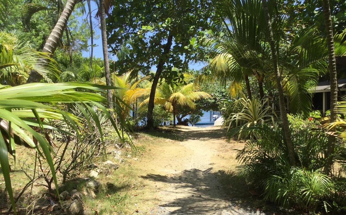 path-to-the-beach-II-2