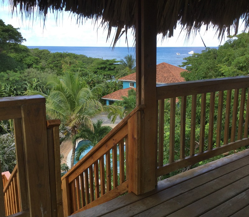 view-from-palapa